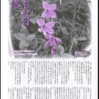 木もれ日通信No.77